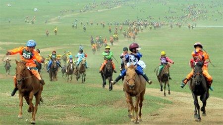 Энэ жилийн наадмаар хурдан морь уралдах уу?